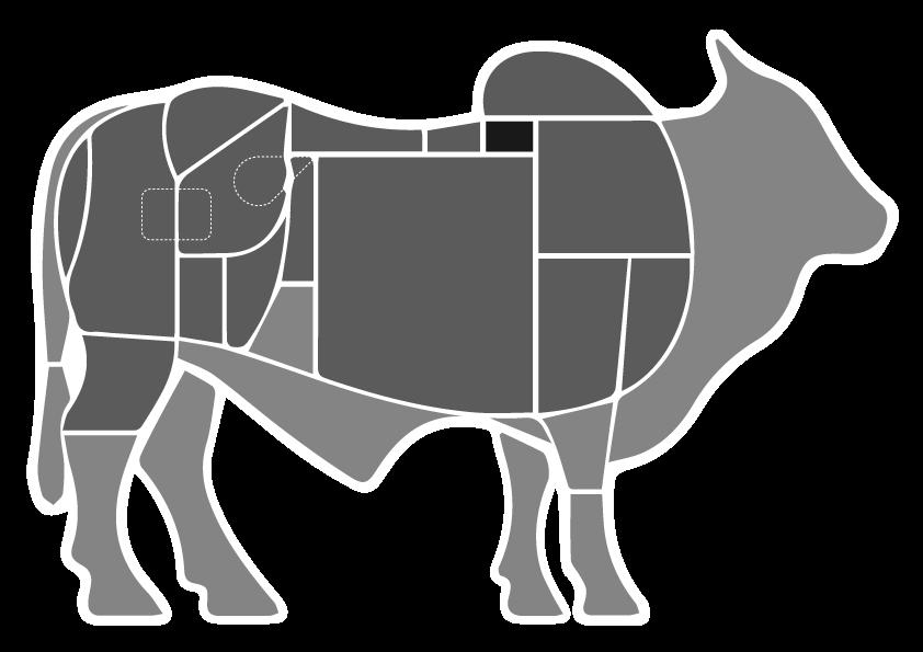 Capa de Filé- Boi