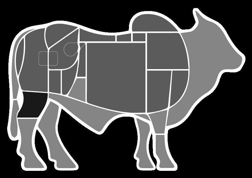 Musculo do Traseiro- Boi